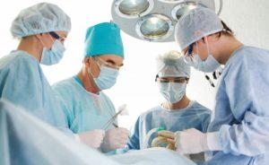 attività clinica veterinario ticino